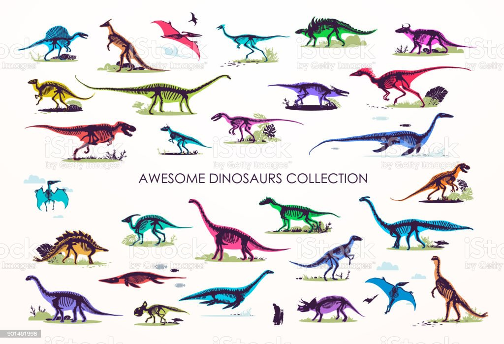 Set of silhouettes, dino skeletons, dinosaurs, fossils. vector art illustration
