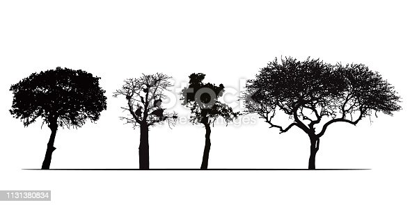 Set of silhouettes of African trees, isolated on white background - vector
