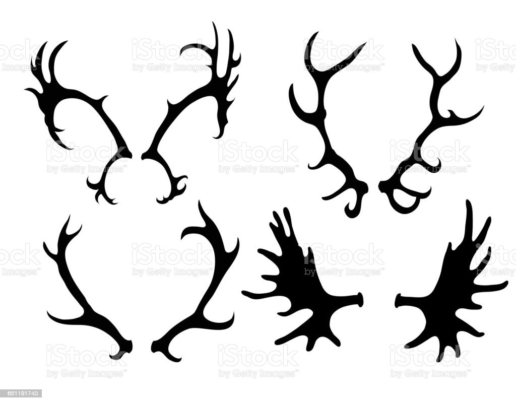 Set of silhouettes of deer and elk horns vector art illustration