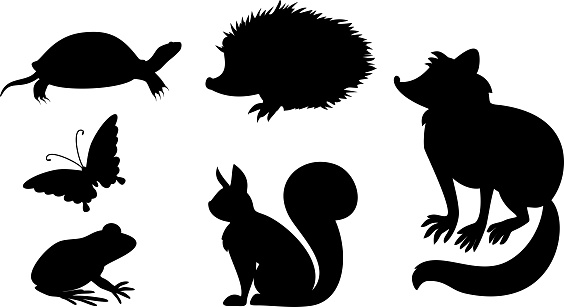 Set of silhouettes of different cartoon animals, inhabitants of the city park