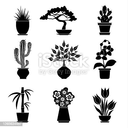Vector silhouettes of houseplants and flowers isolated on white background. Set stencil house plants.