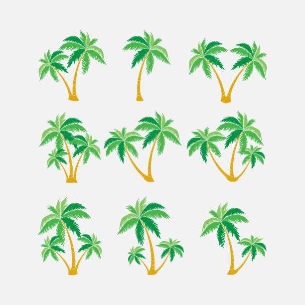 illustrations, cliparts, dessins animés et icônes de jeu des silhouettes des palmiers, symbole exotique - palmier
