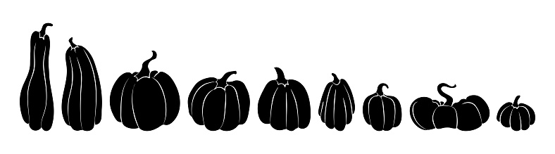 Set of silhouettes of pumpkins black on white from largest to smallest. A collection of pumpkins of various shapes in a row. Vector stock illustration isolated on white background.
