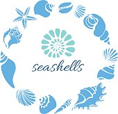 Template. Set of silhouettes of sea shells. Starfish, shell, conch, spiral, helix on white background. Place for text. Undersea world in circle. Vector illustration for symbol, greeting card, wallpaper, background