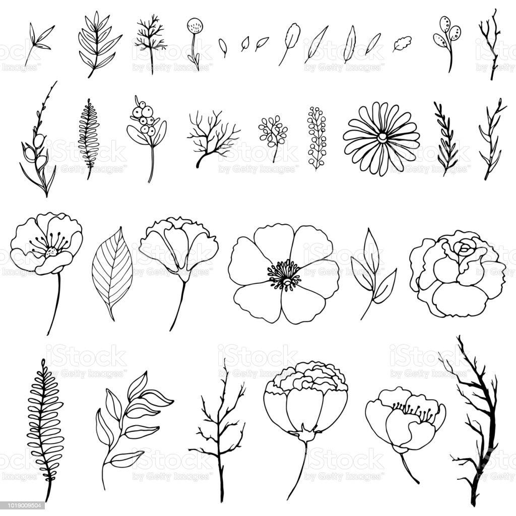 Set van eenvoudige doodles van bloemen en takjes - Royalty-free Achtergrond - Thema vectorkunst