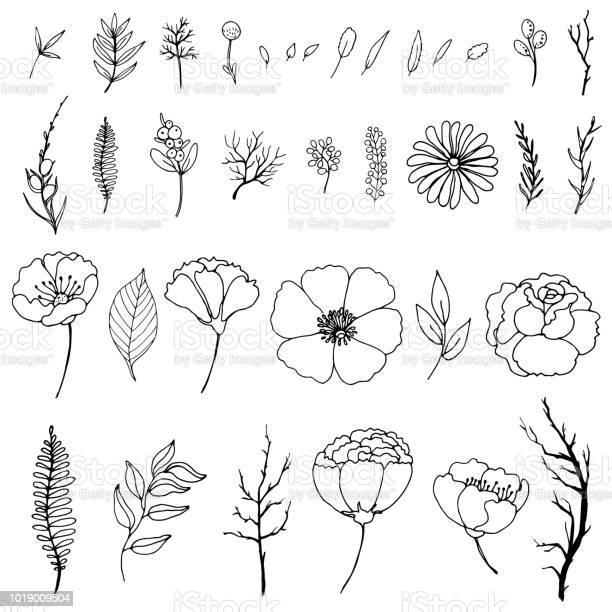 Set Van Eenvoudige Doodles Van Bloemen En Takjes Stockvectorkunst en meer beelden van Achtergrond - Thema