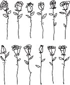 Black and white line drawing of single roses on the white background.