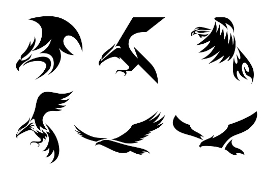 Set of six line art vector logo of eagle. Can be used as a logo Or decorative items