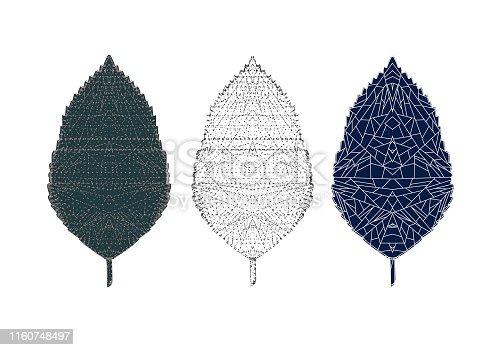 Leaf, Autumn, Tree, Textured