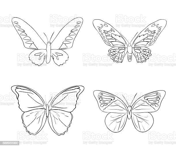 Set of sketches doodle butterflies vector id588955992?b=1&k=6&m=588955992&s=612x612&h=og4zb5fqlibkeebawt9qaohyxvadixovdaxrbb8iwmi=