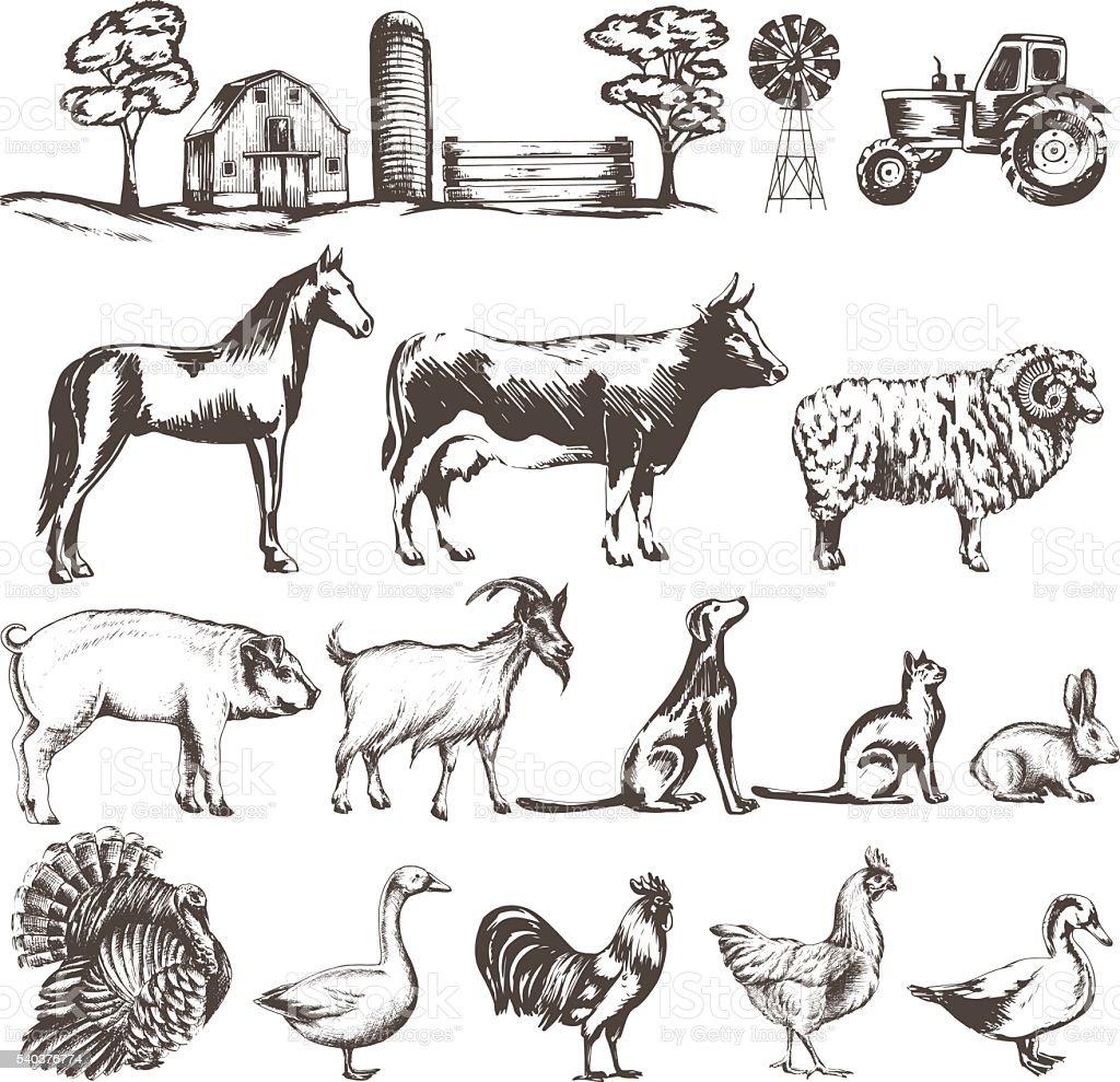 set of sketches vector art illustration