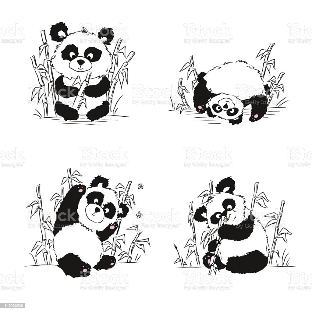 Un Ensemble De Croquis Avec Un Petit Panda Panda Assis De