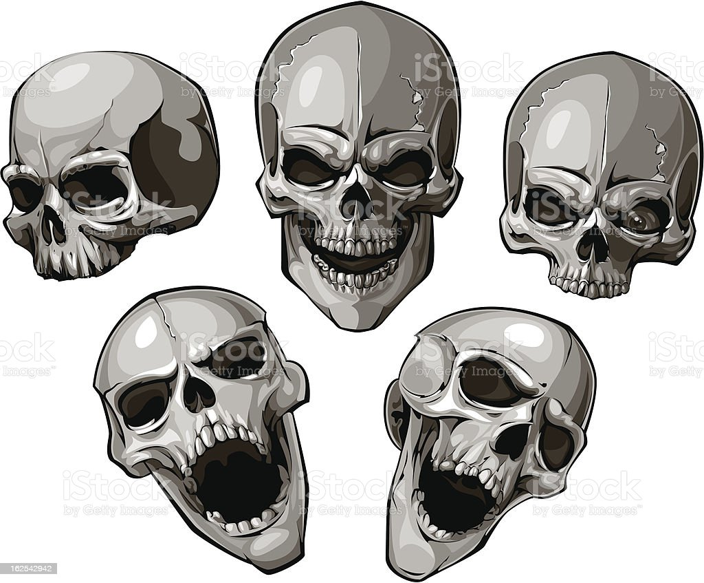 Set of skulls royalty-free stock vector art
