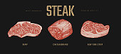 Set of slices steaks vector illustration. Meat Steaks Rump, Chateaubriand, New York Strip. Hand drawn pieces of meat and beef tenderloin. Design elements of butcher shop, farmers market, restaurant.