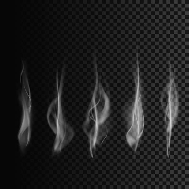 set of smoke transparent smoke shapes vector smoke template stock
