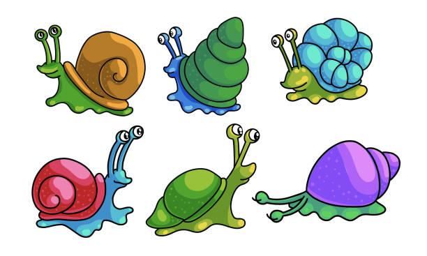 ilustrações de stock, clip art, desenhos animados e ícones de set of snails with shells crawling vector illustration - natureza close up