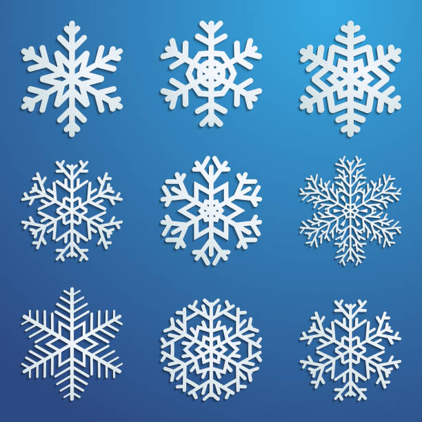 Set of snowflakes Set of white snowflakes various forms with shadows on blue background. Vector illustrations. ice crystal stock illustrations