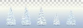 Firs in the snow.Blue Christmas trees.  Christmas trees in the snow .Vector.Painted Christmas trees in the frost. set for new year decor. Vector. Eps10.