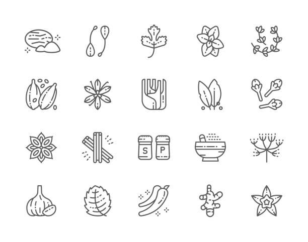 향신료 라인 아이콘의 집합입니다. 육 두 구, 케이 퍼, 파 슬 리 오 레가 노, 타임, 캐 러 웨이, 마늘, 생강 등 - 바닐라 양념류 stock illustrations