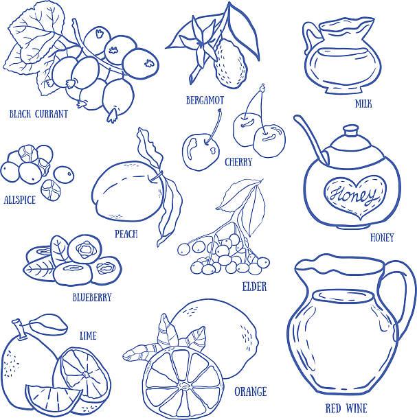 satz von gewürzen, beeren und früchte für den herbst getränke. - holunderstrauch stock-grafiken, -clipart, -cartoons und -symbole