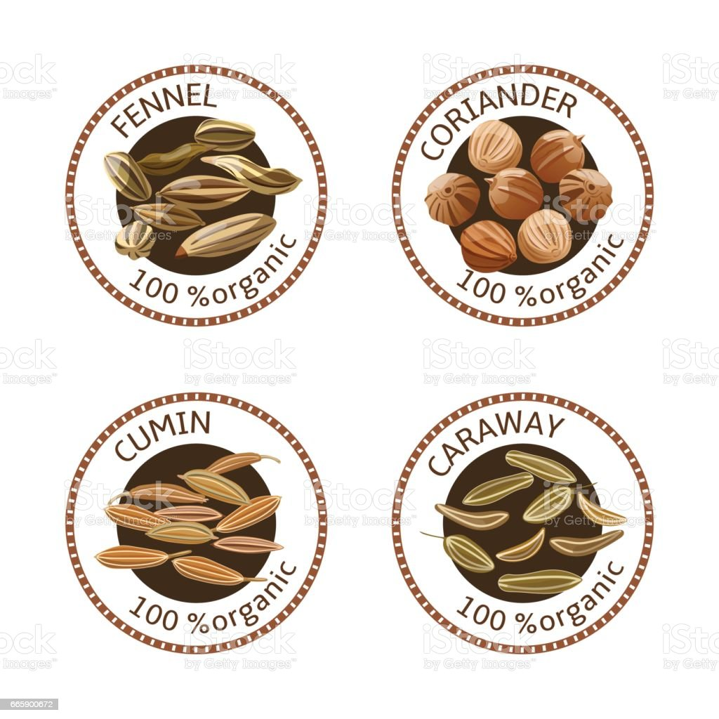Set of spices labels. 100 organic. collection vector art illustration