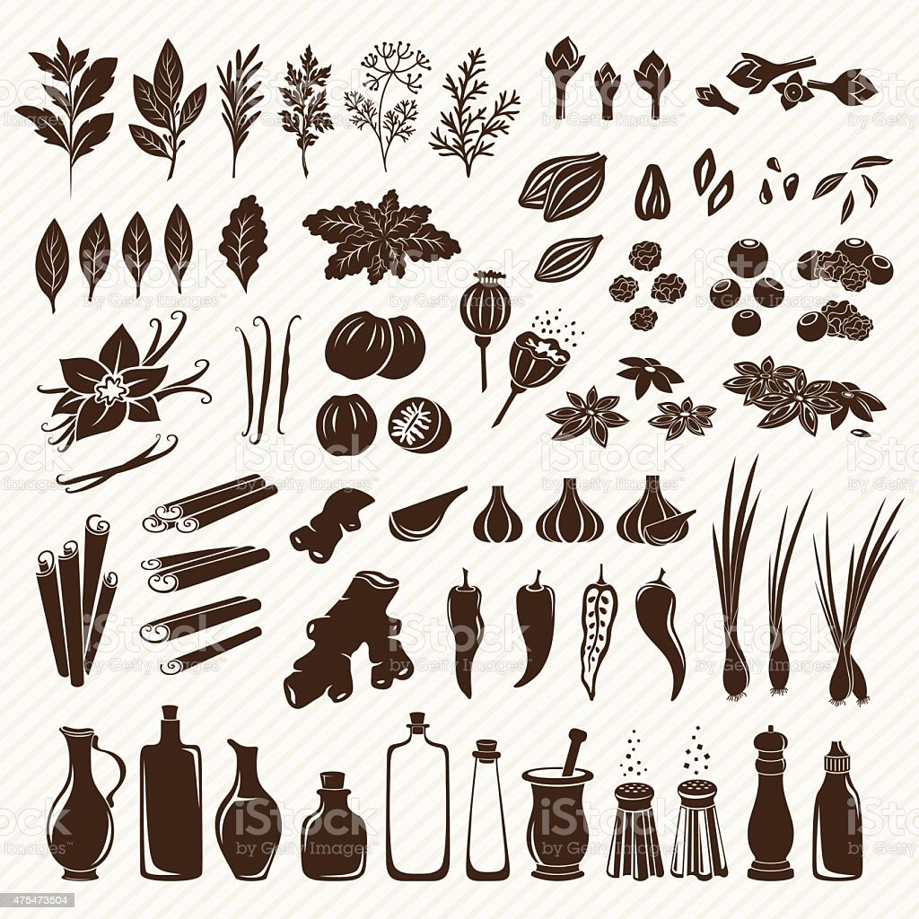 Set of spices vector art illustration