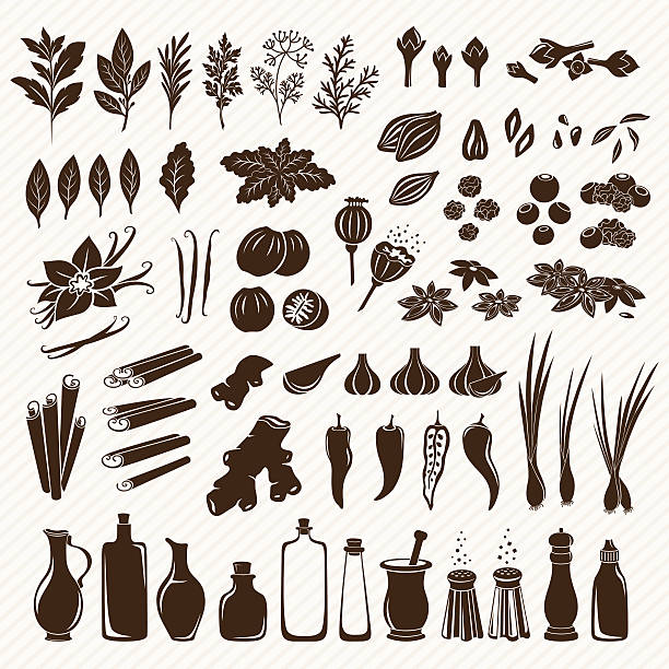 Set of spices Spices, condiments and herbs set salt seasoning stock illustrations