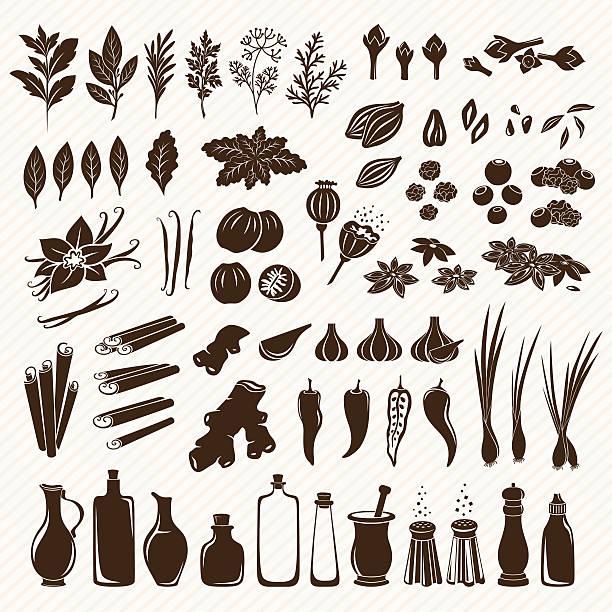 illustrazioni stock, clip art, cartoni animati e icone di tendenza di set di spezie - aglio cipolla isolated