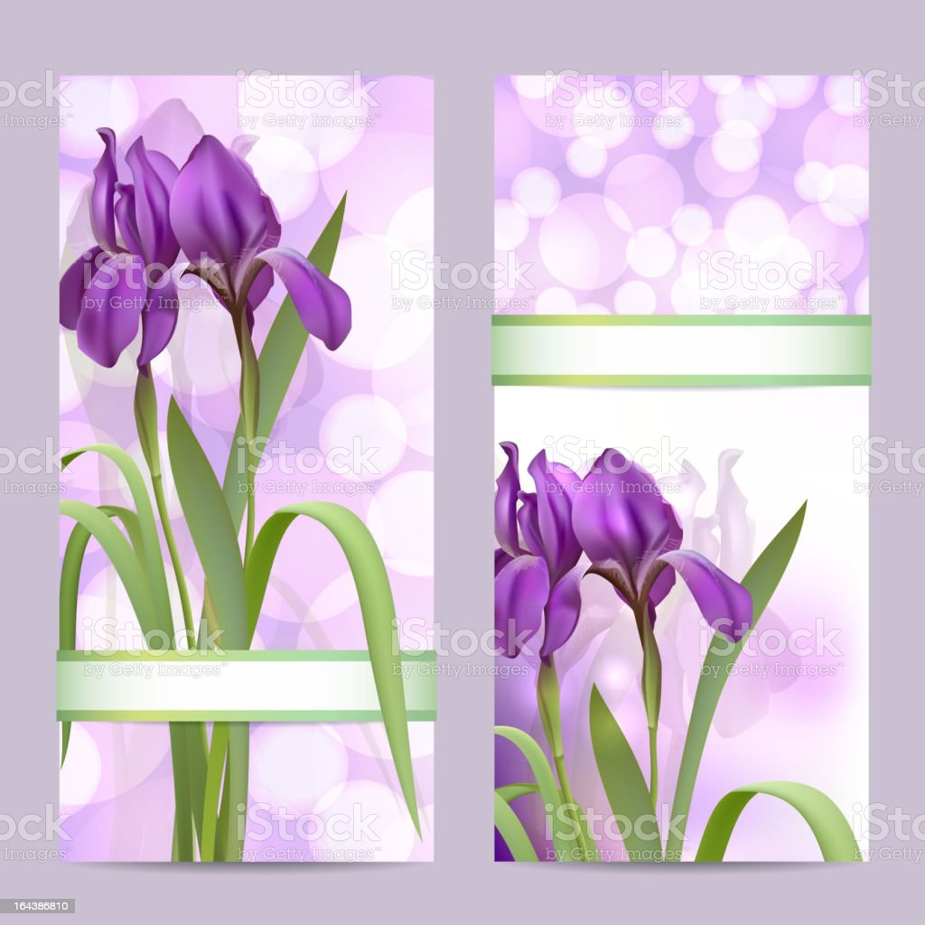 Set Of Spring Banners With Purple Iris Flowers Stock Vector Art