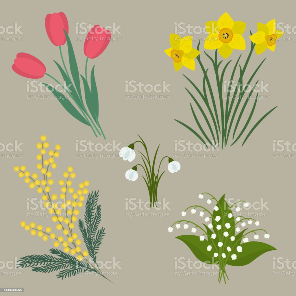 Set Of Spring Flowers On A Beige Background Stock Vector Art More