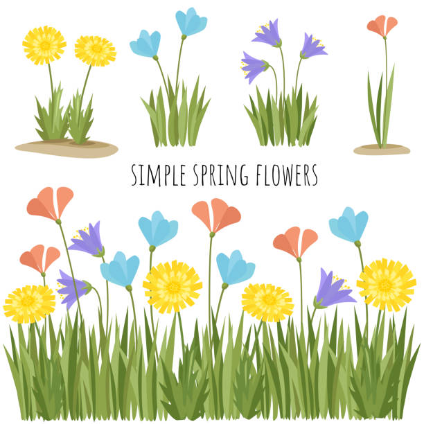 Set of spring simple flowers - illustrazione arte vettoriale