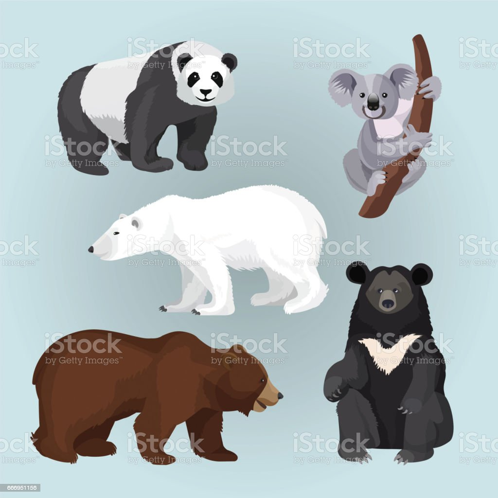 Set of standing, sitting and creeping bears isolated on blue. vector art illustration