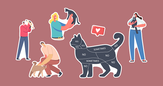 Set of Stickers People and Pets Theme. Cat with Infographics on Body Yes, No, Sometimes. Owners Caress of Animals