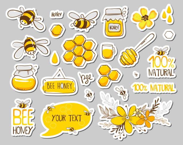 Set of stickers with cute bees, flowers and honey with lettering. Vector illustration EPS 10 Set of stickers with cute bees, flowers and honey with lettering. Vector illustration EPS 10 beekeeper stock illustrations