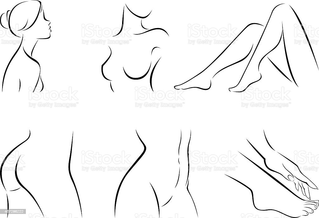 Set of stylized body parts vector art illustration