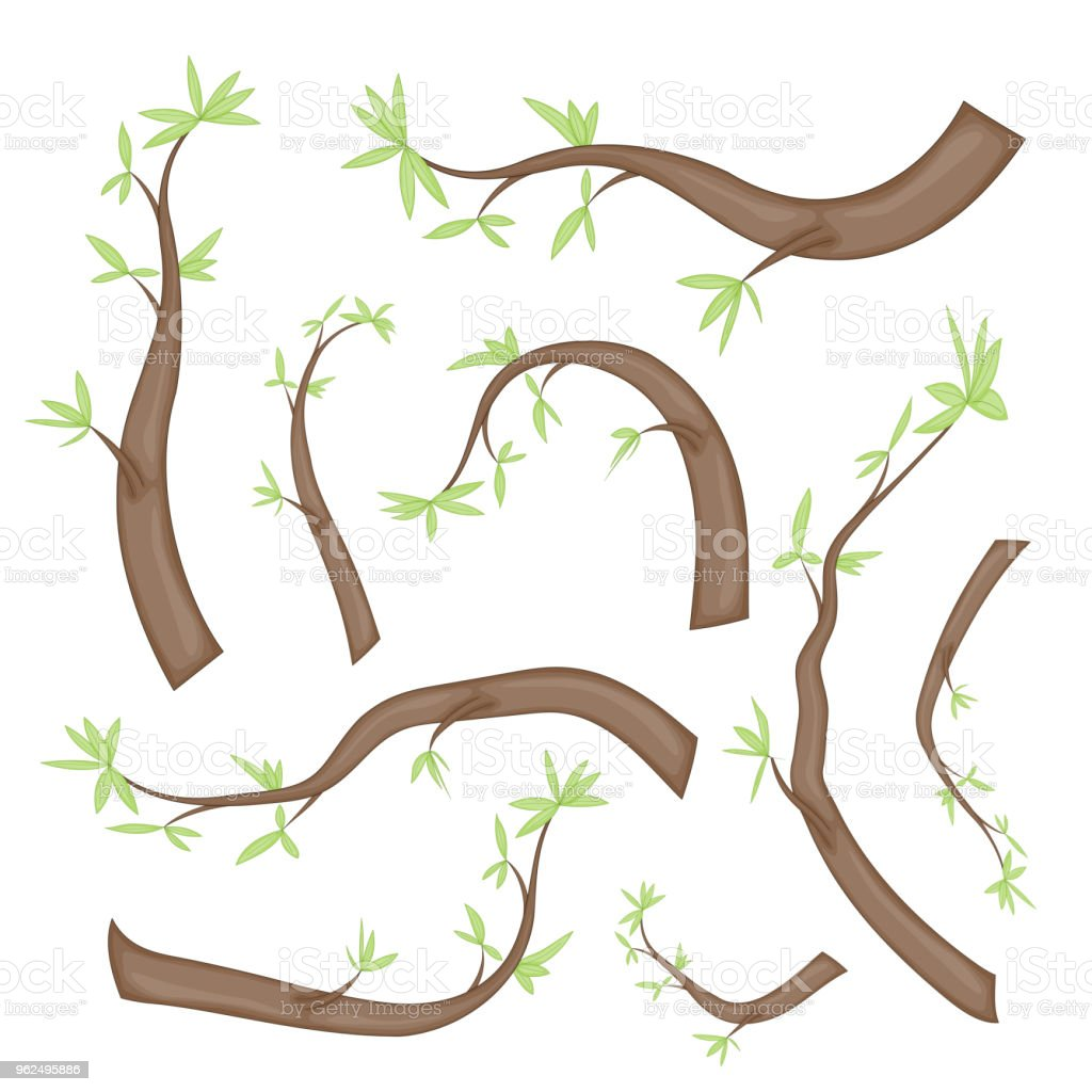 set of stylized branches with leaves. isolated on white background in vector. collection of leaves, twigs, shoots in a cartoon style - Royalty-free Art stock vector