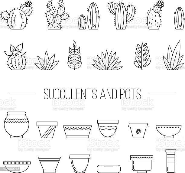 Set of succulent plants cactuses and pots vector id493909218?b=1&k=6&m=493909218&s=612x612&h=gtxu b xam8kn6qxp8ov10wxjrihq xbalj0ym42pte=