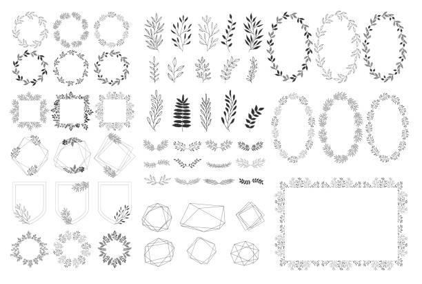 satz von sommerlichen dekorationselementen. vektorkräuter, rahmen, kränze. isoliert. handgezogenes design. - monogrammarten stock-grafiken, -clipart, -cartoons und -symbole