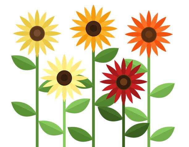 Set of sunflowers vector art illustration