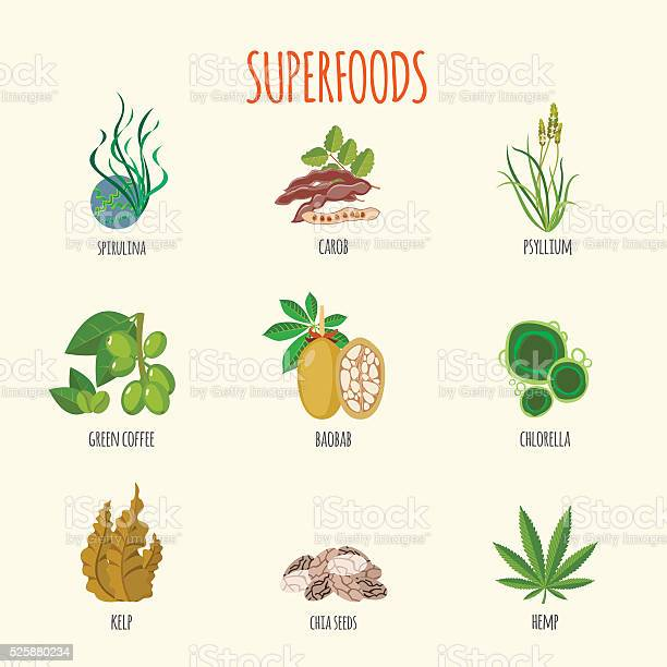 Set of superfoods in flat style vector id525880234?b=1&k=6&m=525880234&s=612x612&h=kfwlyc0tv12vw3pv8ryxpjmbdwtb188c hxdcatslgi=