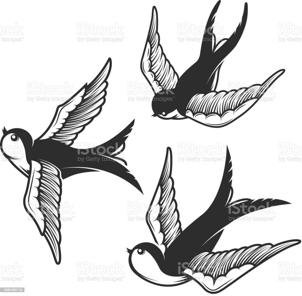Conjunto de ilustraciones de golondrina aislado sobre fondo blanco. Diseño de elementos de la muestra, insignia, emblema, camiseta. - ilustración de arte vectorial