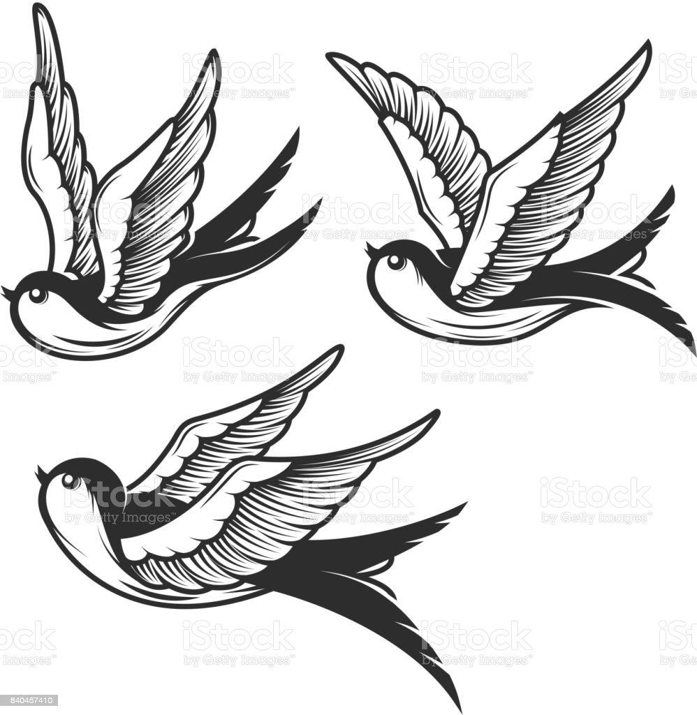 Conjunto de ilustraciones de golondrina aislado sobre fondo blanco. Diseño de elementos de la muestra, insignia, emblema, camiseta. Ilustración de vector - ilustración de arte vectorial