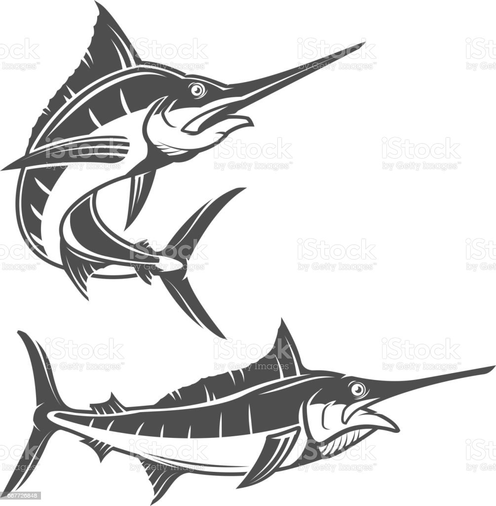 royalty free sailfish clip art vector images illustrations istock rh istockphoto com sailfish clipart free Sailfish Graphics