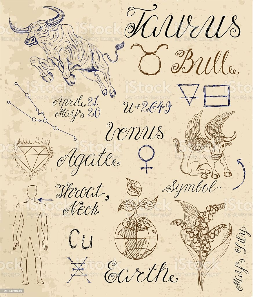 Set of symbols for zodiac sign taurus or bull stock vector art set of symbols for zodiac sign taurus or bull royalty free set of symbols for buycottarizona