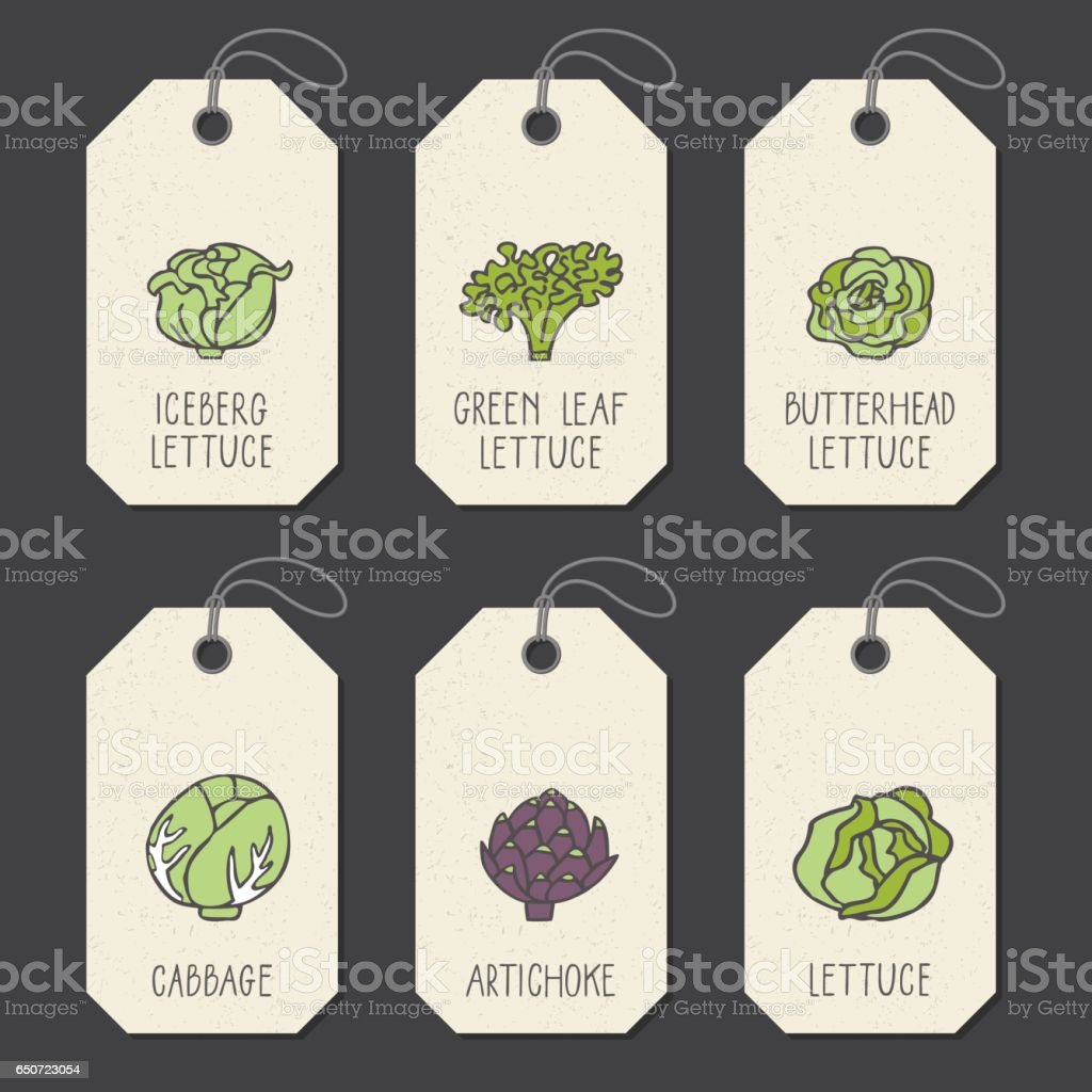 Set Of Tags Or Label Templates With Hand Drawn Vegetable Stock ...