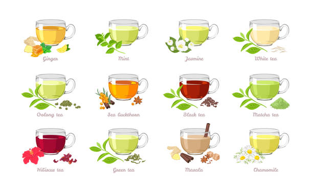 illustrazioni stock, clip art, cartoni animati e icone di tendenza di set of tea of ​​different types. vector illustration of collection of popular drinks in cartoon flat style. glass cups isolated on white background. - miele dolci