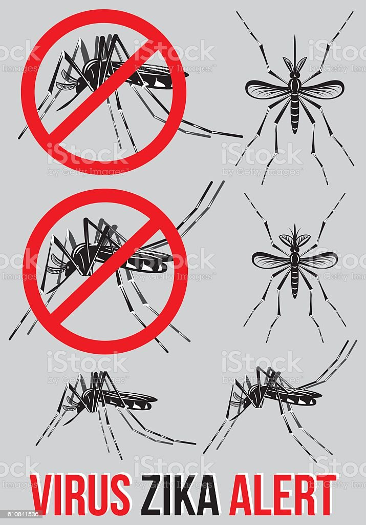 Set of templates, elements with mosquito Zika virus alert. vector art illustration