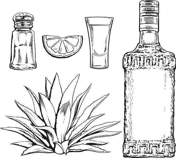 bildbanksillustrationer, clip art samt tecknat material och ikoner med set of tequila bottle, shot, salt mill, agave and lime - cactus lime
