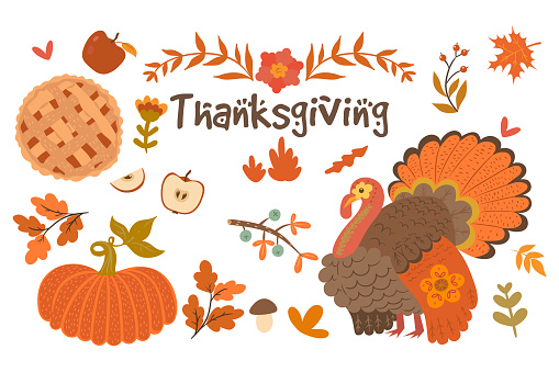 Set of Thanksgiving Day objects isolated on white background. Vector graphics.