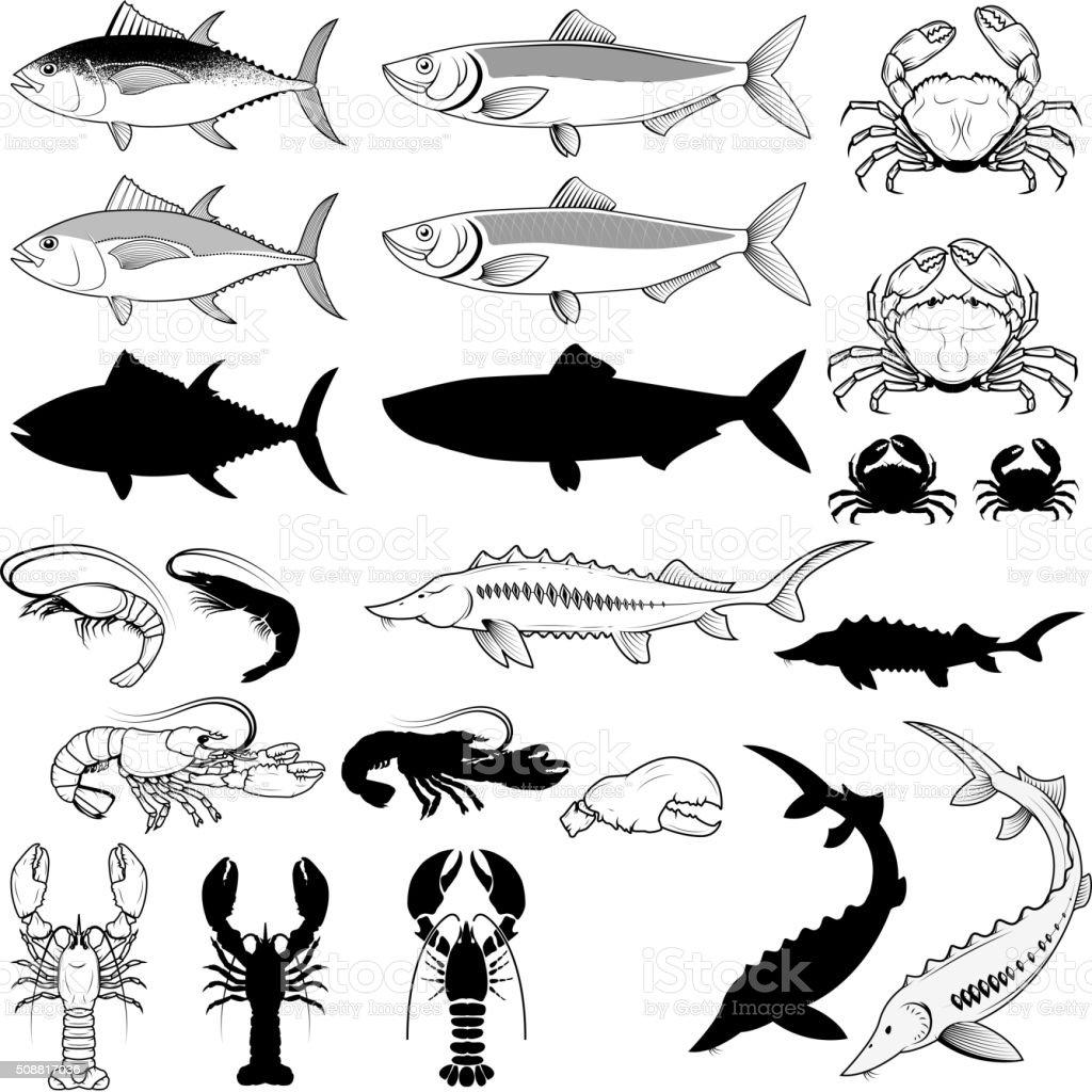 Set of the fish, crabs, shrimps, lobsters. Vector design element vector art illustration